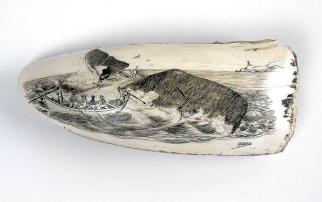Scrimshaw whalers image