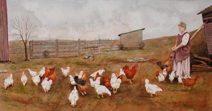 34-chickens-william-erwin